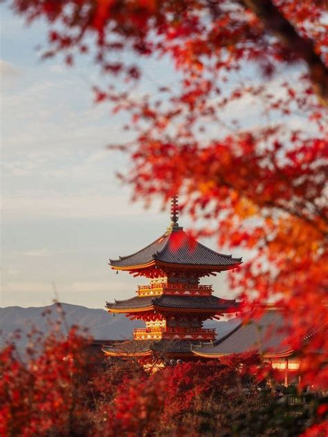 Autumn in Japan - Travel and Photography Tips for Kyoto